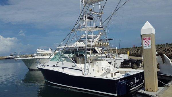 sea hawk sport fishing quepos costa rica